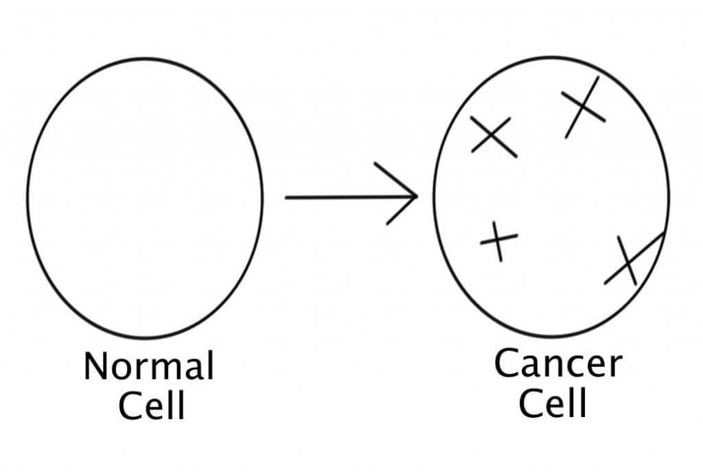 how to tell if cancer cells are dying
