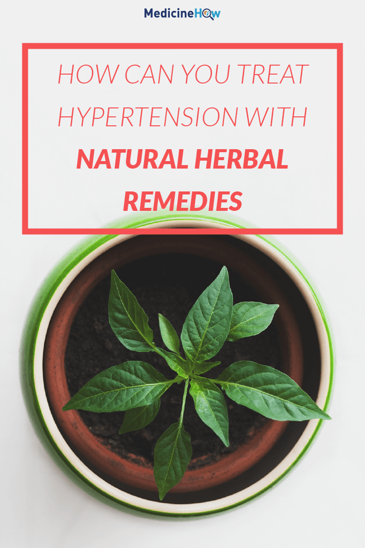 How Can you Treat Hypertension with Natural Herbal Remedies
