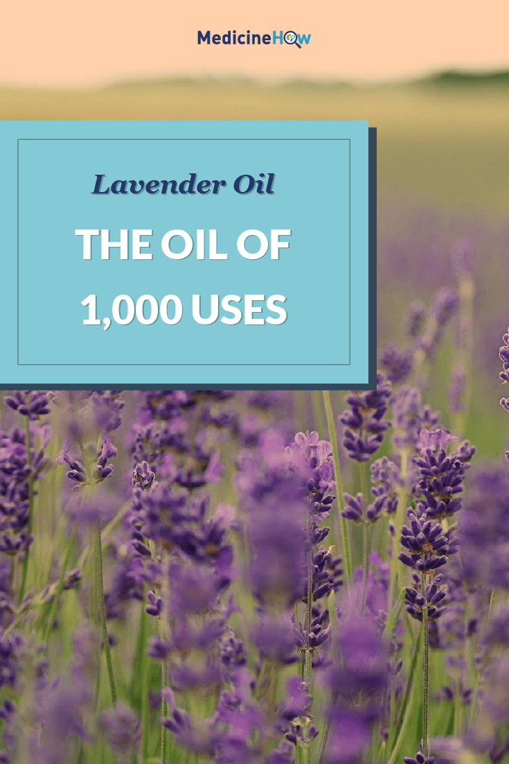 Lavender Oil: The Oil of 1,000 Uses