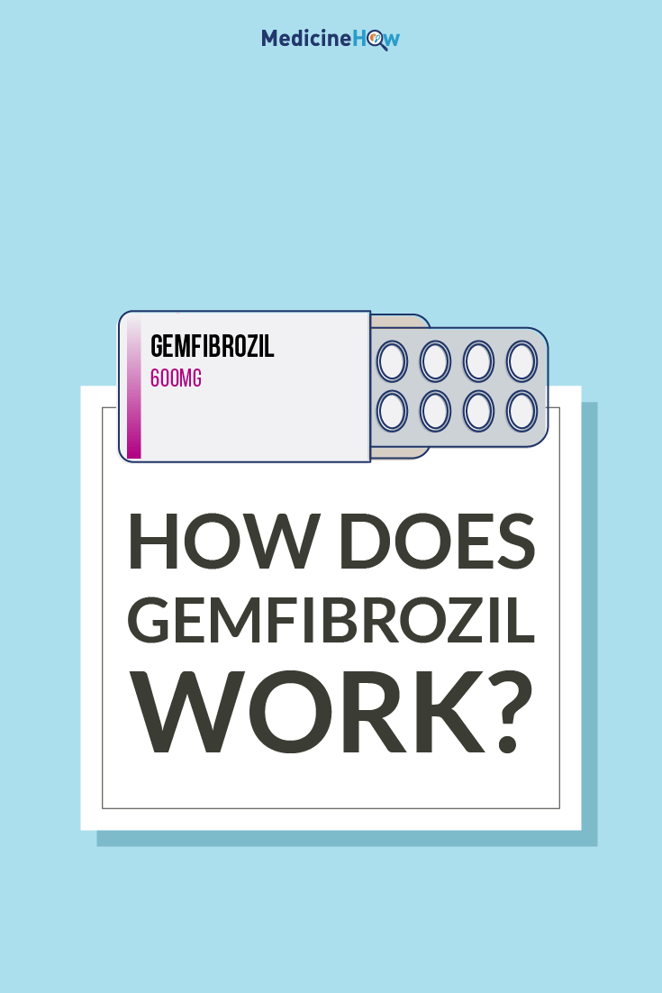How does Gemfibrozil work?