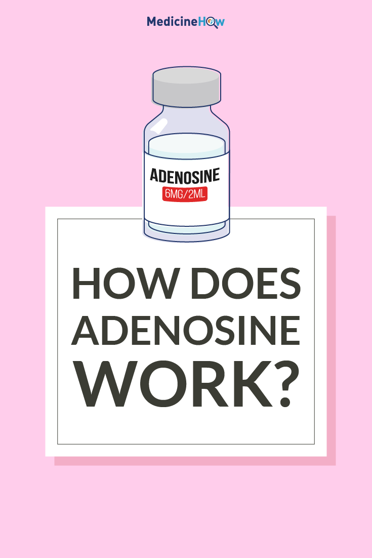 How Does Adenosine Work?