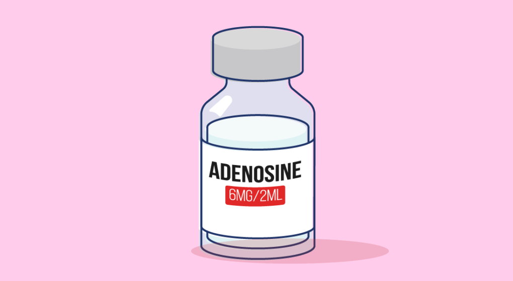How Does Adenosine Work