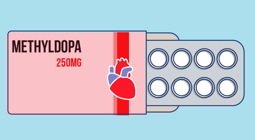 How does Methyldopa Work?