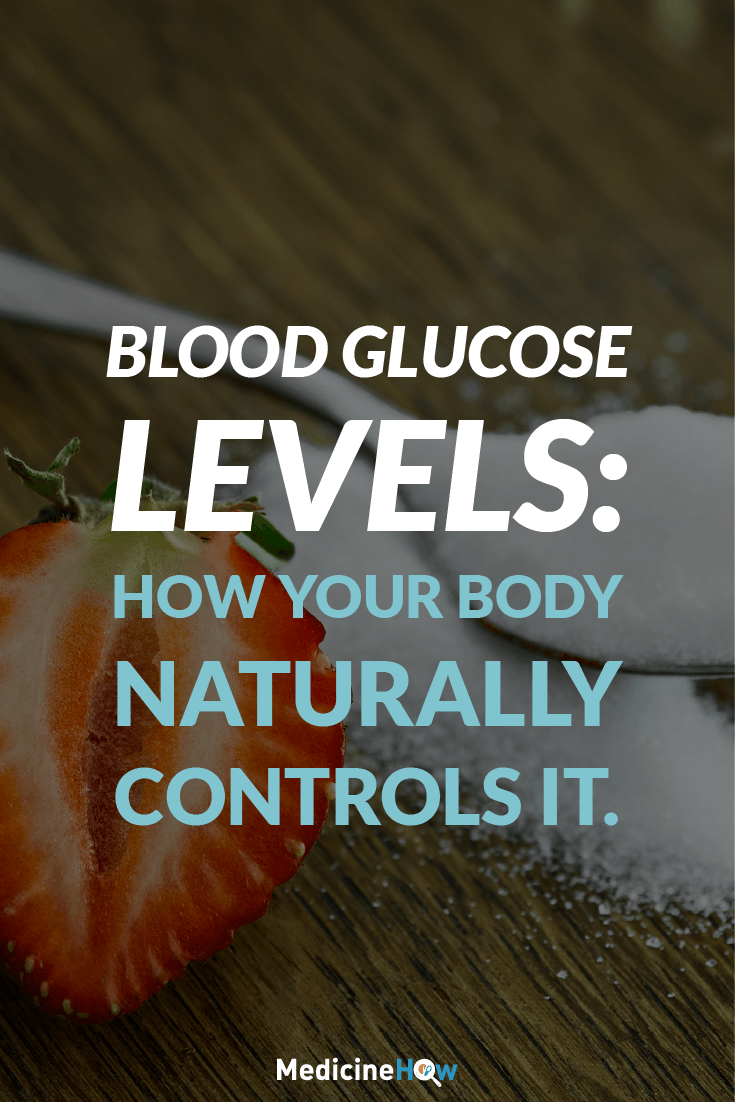Blood Glucose Levels: How Your Body Naturally Controls It