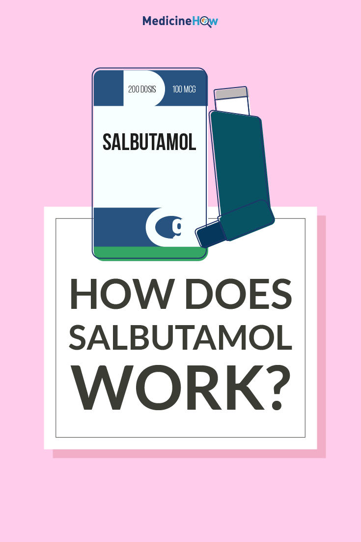 How Does Salbutamol Work?