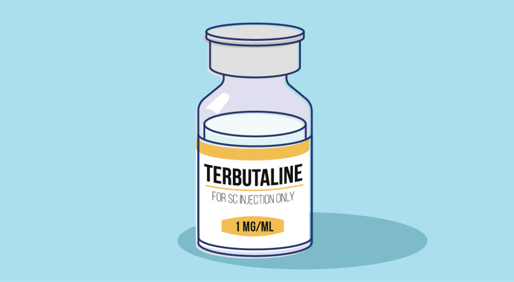 How does Terbutaline Work