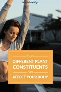 How Different Plant Constituents Can Affect Your Body