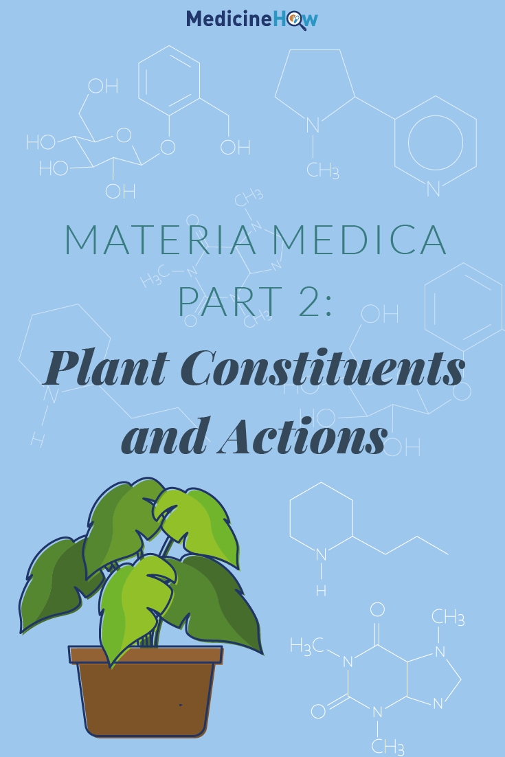 Materia Medica Part 2: Plant Constituents and Actions
