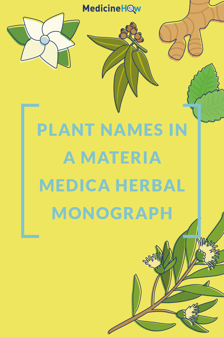 Plant Names in a Materia Medica Herbal Monograph